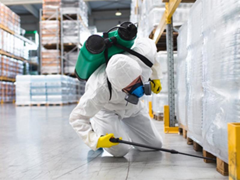 pest-control-workspace- (1)